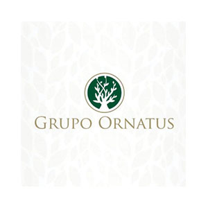 GRUPO ORNATUS